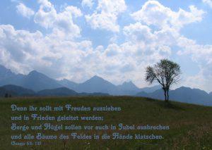Bäume klatschen in die Hände - Jesaja 55,12- Christine Danzer -go4jesus