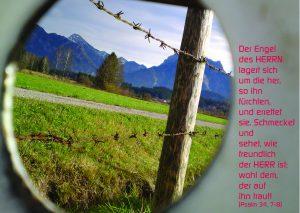 Badewannen Durchblick - Psalm 34,7-8 - Christine Danzer -go4jesus