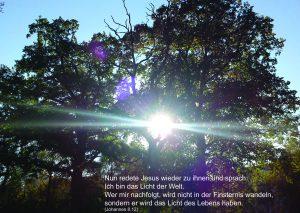Licht der Welt - Johannes 8;12 -Christine Danzer -go4jesus
