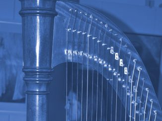 Harfe - Foto: Christine-Danzer - go 4 jesus