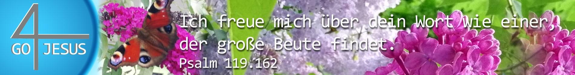Go4Jesus -Bibel - Jesus