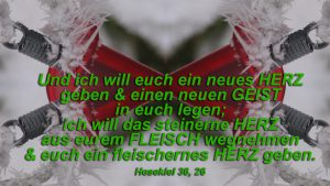 Strom- Hesekiel-36,26 - Bibel - Christine Danzer - go4jesus - Bild mit Bibelzitat