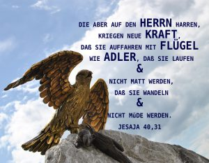 Adler - Jesa ja 49, 31- Christine Danzer -go4jesus