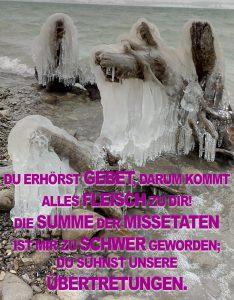 Forggensee- Eis - Christine Danzer - go 4 jesus - Bibel