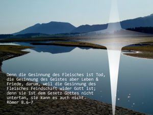 Forggensee - Römer 8, 6-6 - Foto: Christine Danzer - go 4 Jesus -Bibel