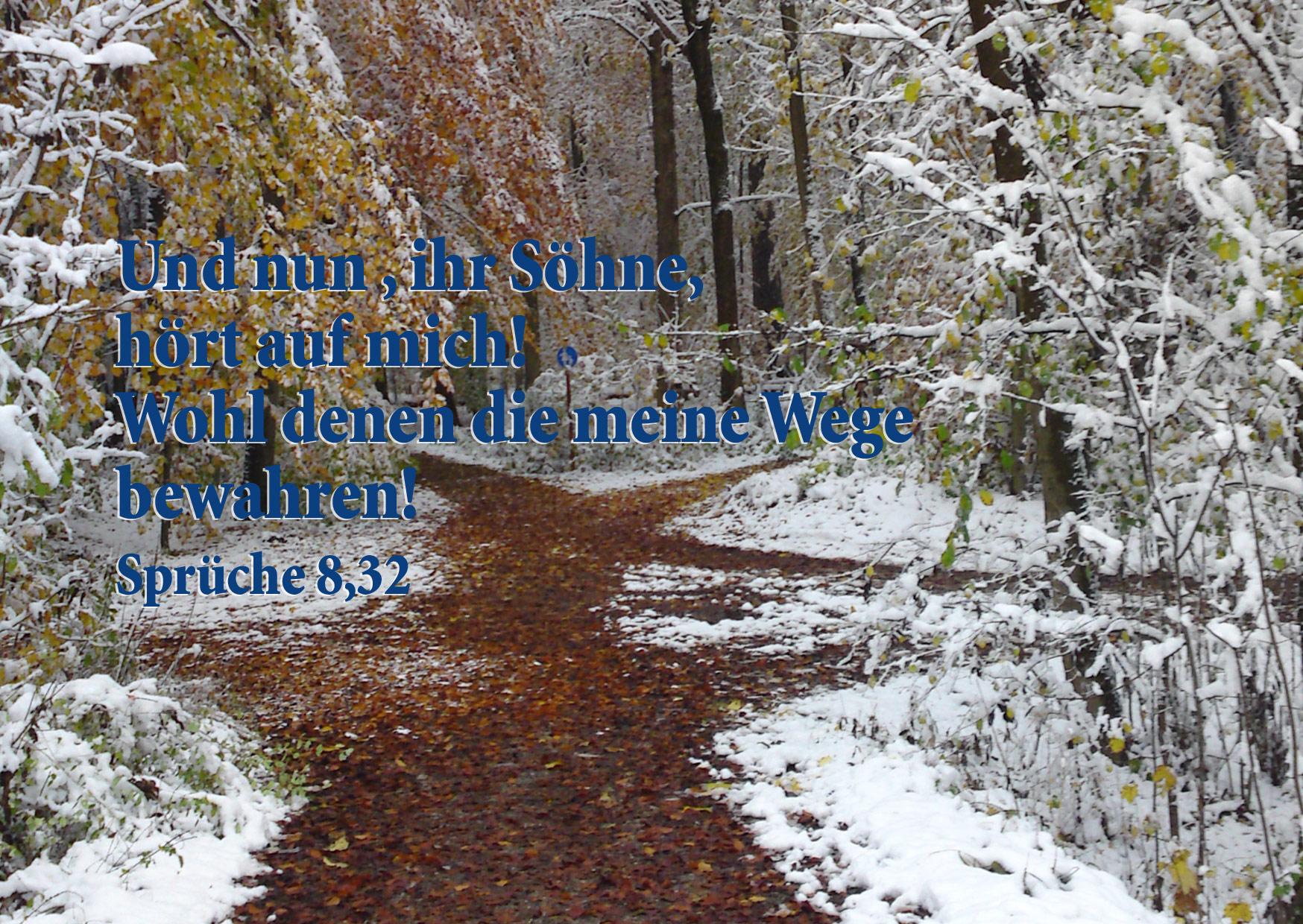 Bibelzitat für jeden Tag, Sprüche 8,32, Weg