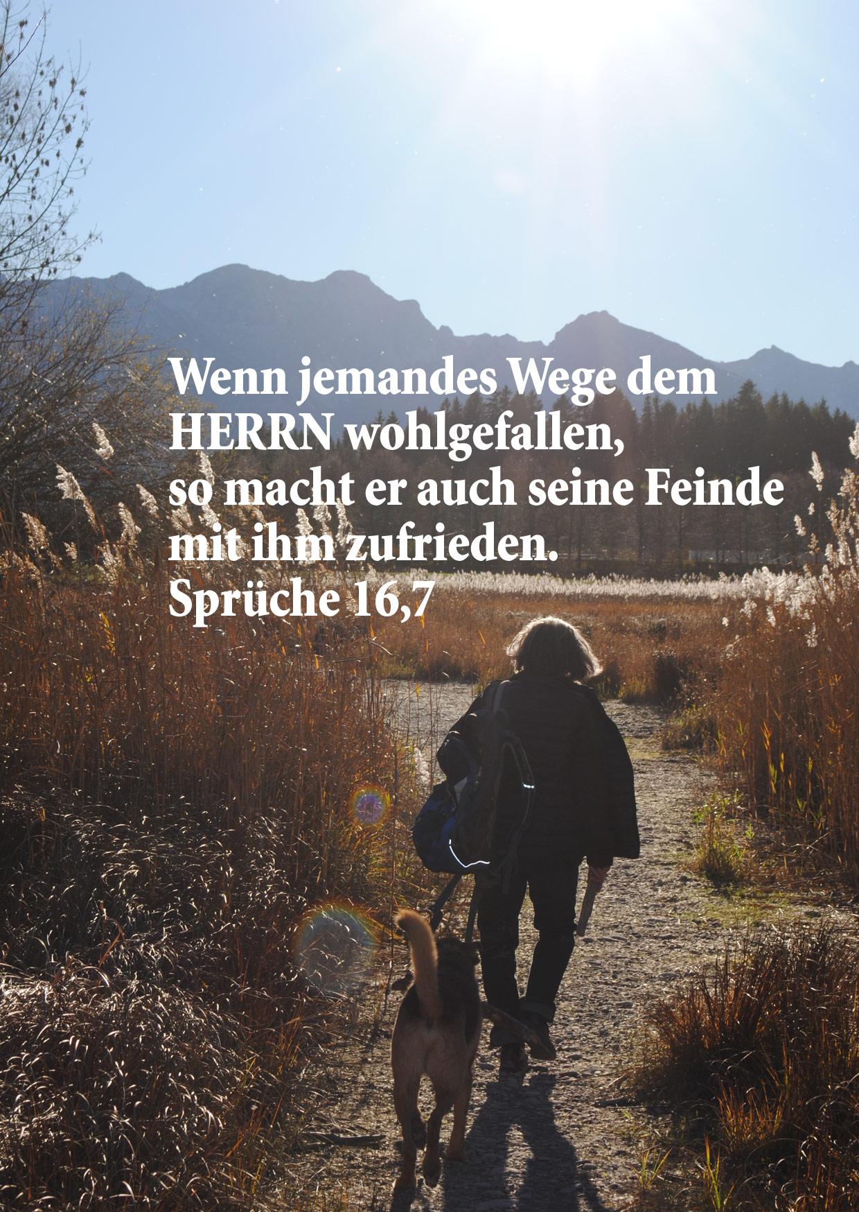 Bild mit Bibelzitat, Sprüche 14,7 Foto: Christine Danzer go 4 Jesus