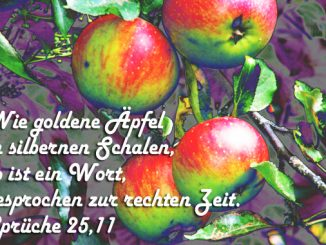 Bibelzitat, Sprüche 25,11, Foto: Danzer, Christine, go 4 Jesus, Bibel