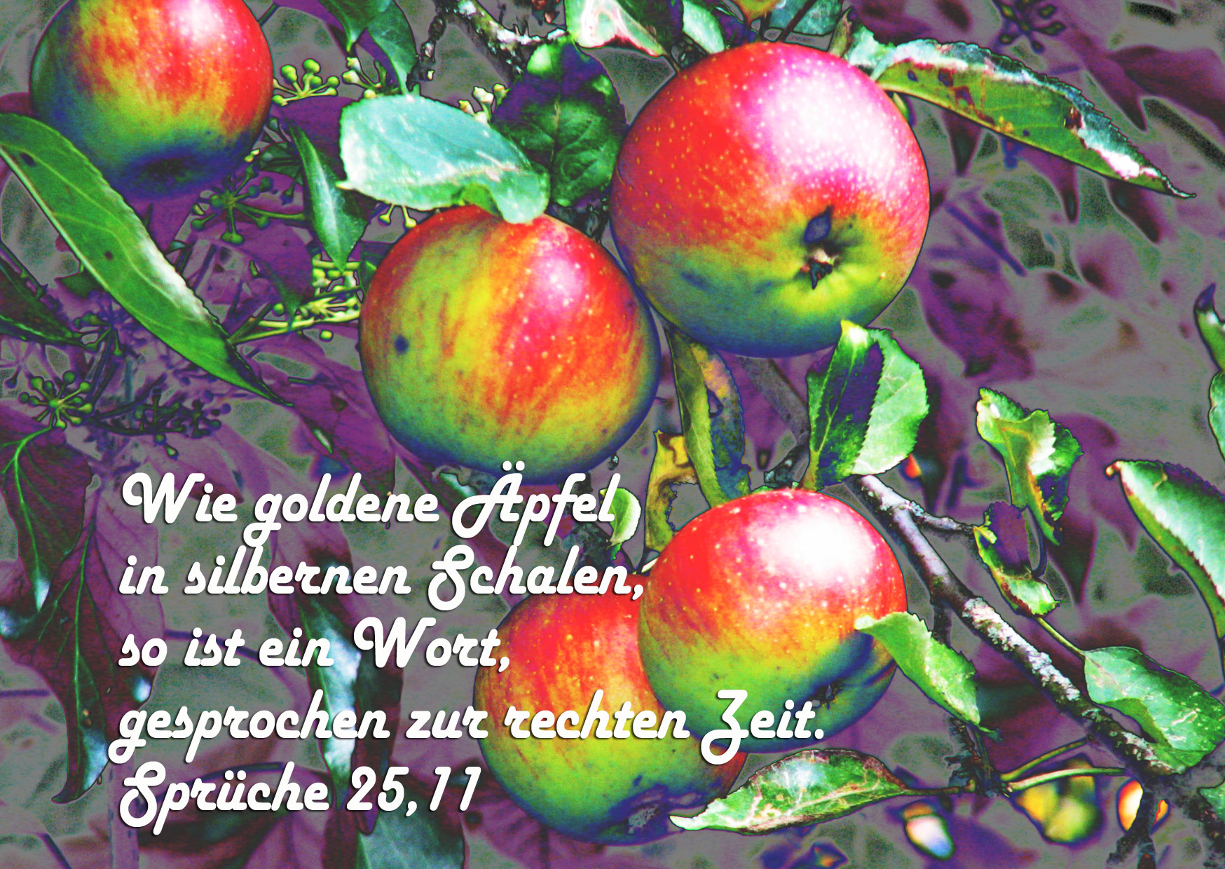 Bibelzitat, Sprüche 25,11, Foto: Danzer, Christine, go 4 Jesus