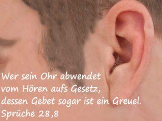 Bibelzitat, Sprüche 28,8, Ohr, Foto: Danzer, Christine, go 4 Jesus, Bibel
