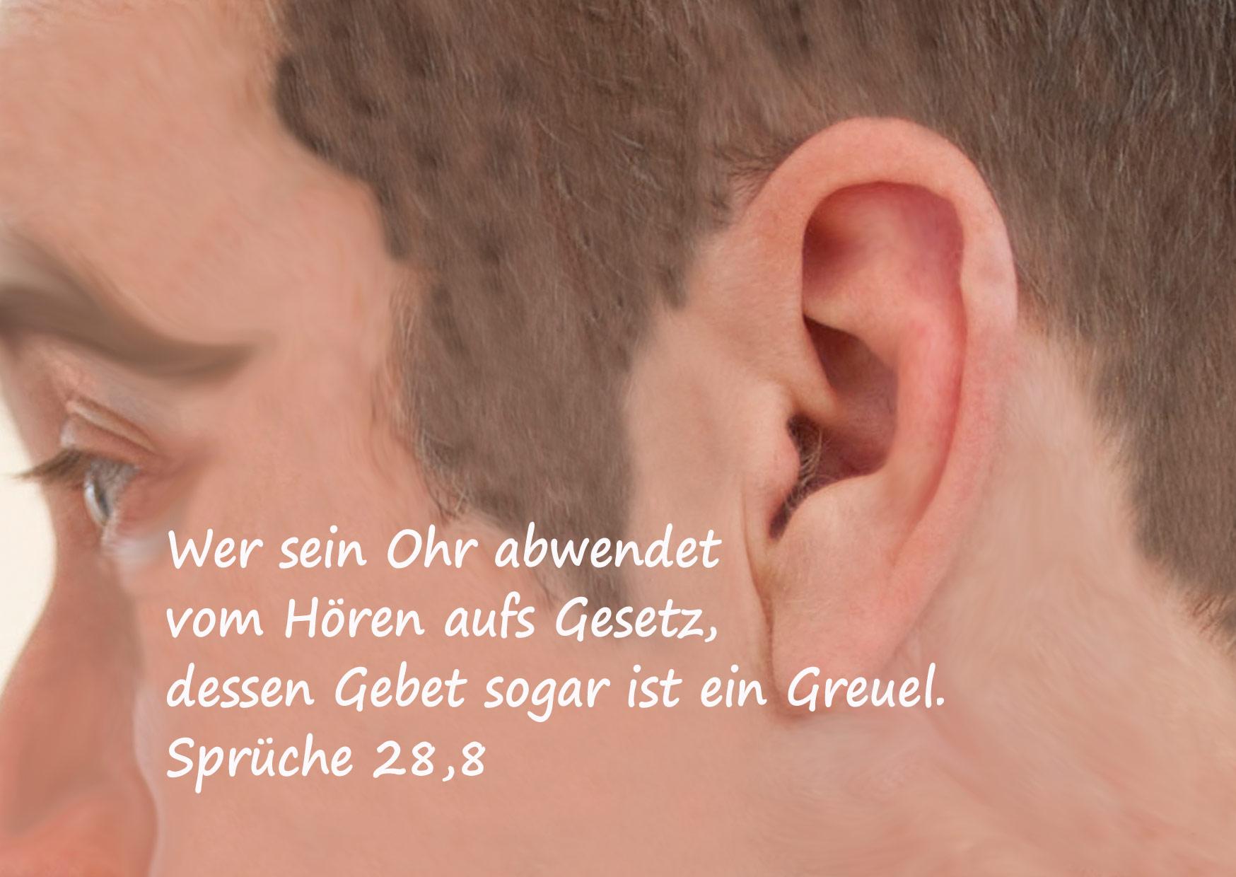 Bibelzitat, Sprüche 28,8, Ohr, Bild: Danzer, Christine, go 4 Jesus, Bibel
