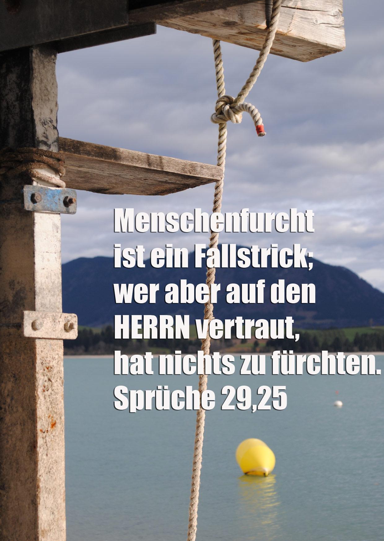 Bibelzitat, Sprüche 29,5, Foto: Danzer, Christine, go 4 Jesus, Bibel