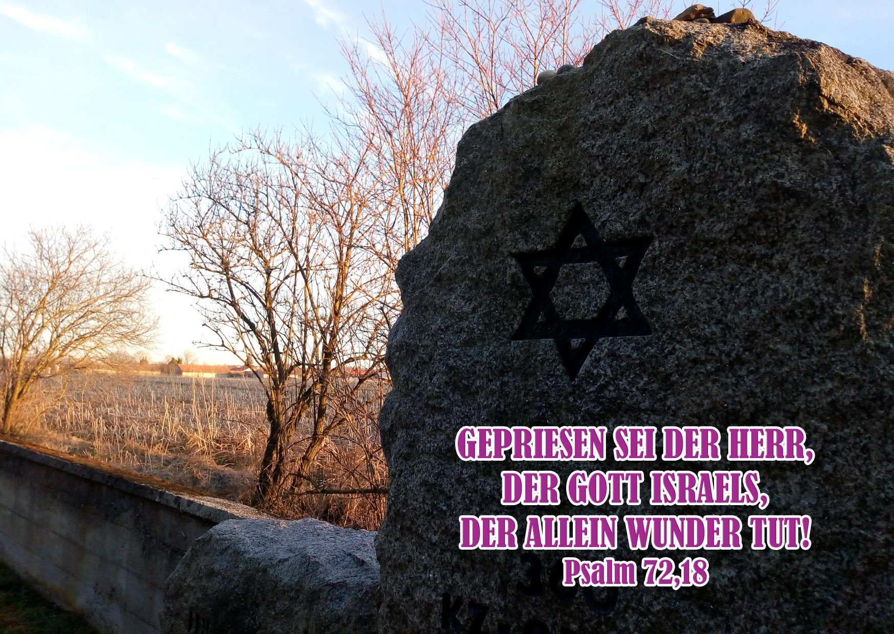 Bibelzitat, Psalm 72,18, Foto: Danzer, Christine, Bibel, go 4 Jesus
