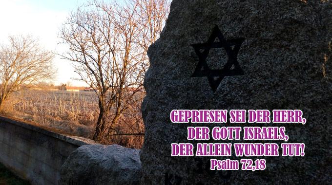 Bibel, Jesus, Bibelzitat, Bibelvers, Bibelspruch, Psalm, Danzer, go 4 Jesus