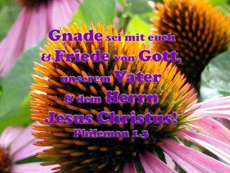 Bibelzitat, Friede, Phil 1,3 Foto: Christine Danzer, go 4 Jesus