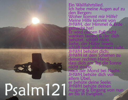 Bibel, Wurzel mit Psalm 121, Foto: Christine Danzer, go 4 Jesus