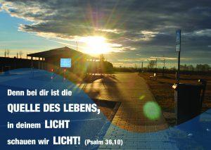 In deinem Licht - Psalm 36,10 - Christine Danzer -go4jesus