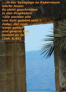 Synagoge Kapernaum - Johannes 8; 45 - Walter Hagel-go4jesus