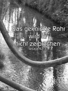Geknicktes Rohr - Jesaja 42, 3 -Das geknickte Rohr wird er nicht zerbrechen - Christine Danzer - go 4 jesus