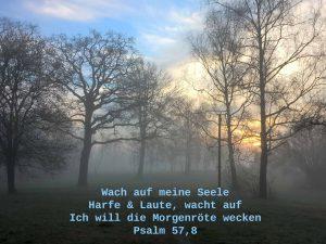 Morgenlandschaft im Nebel - Psalm 57, 8 - Wach auf meine Seele - Christine Danzer - go 4 jesus