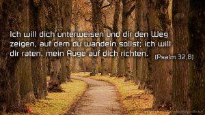 Allee-Psalm 32,8 - Bibel -Fabian Will - go 4 jesus