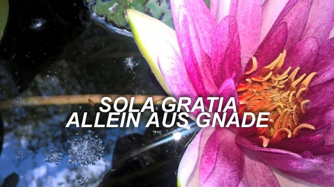 sOLA_gRATIA- Allein aus Gnade- Christine Danzer - go 4 jesus