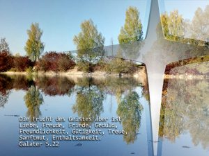 Baggerseee- Die Frucht des Geistes- Foto: Christine Danzer , go 4 Jesus, Bibelzitat-