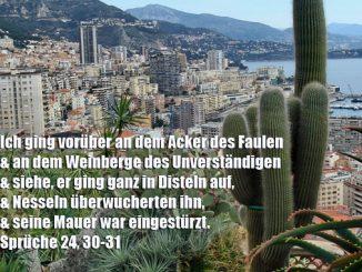Bibelzitat, Sprüche24,30, Foto: Danzer, Walter, go 4 Jesus