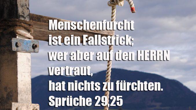 Bibelzitat, Menschenfurcht, Sprüche 29,1 , Bibel, Foto: Danzer, Christine