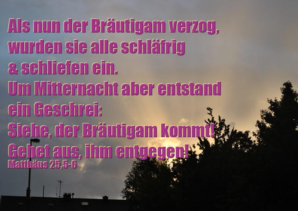 Der Bräutigam komm, Evangelium, Jesus, Christus, Foto: Christine Danzer
